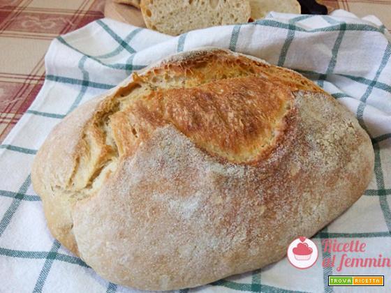 Pane al grano duro Cappelli con lievito madre