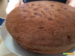 Ricetta semplice e veloce per la torte margherita al cacao