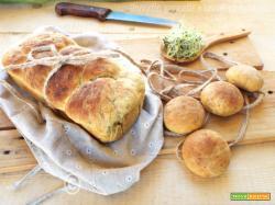 Pan brioche con germogli di porro