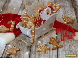 Biscotti allo zenzero | Gingerbread
