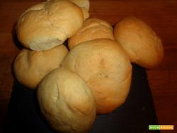Ricetta – Panini allo strutto con e senza Bimby