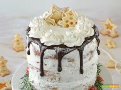 Naked Cake di panettone