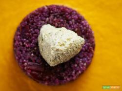 quinoa alle carote viola e gialle