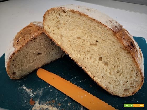 Pane con semola rimacinata di grano duro – Ricetta con Li.Co.Li. – 15h lievitazione