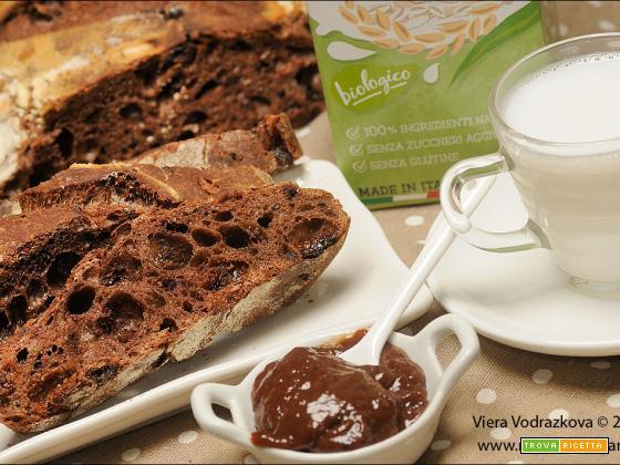Pane al cacao, uvetta e gocce di cioccolato
