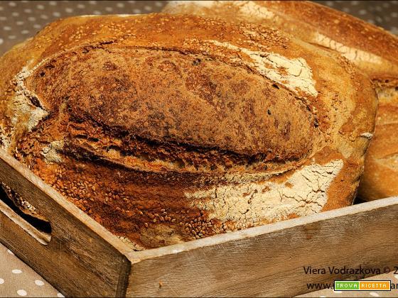 Pane al Teff fermentato e semi di sesamo