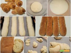 Filoncini e colombine di pane con semola rimacinata