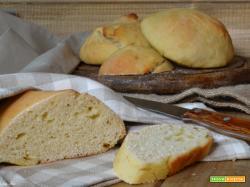 Pane con lievito madre ricetta e consigli