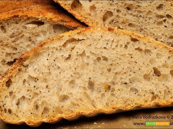 PaneTipo 2 farina semiintegrale con i semi