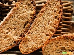 Pane quotidiano con farina di miglio integrale