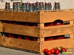 Come fare la salsa di pomodoro: occorrente e preparazione
