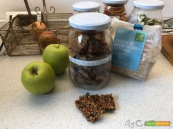 Barrette o biscottini energetici con avena, mela e cioccolato con il Companion Moulinex