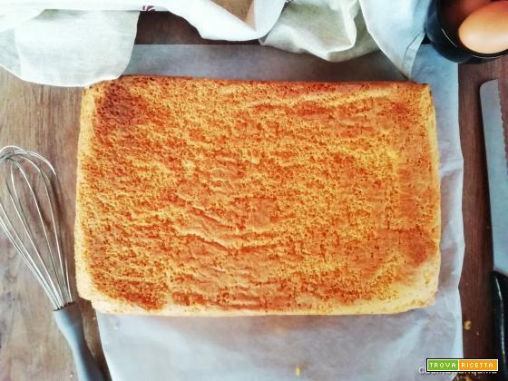 Pan di spagna rettangolare (dose per 16 porzioni)