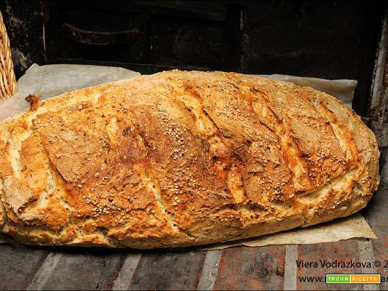 Filone senza glutine con Revolution e grano saraceno