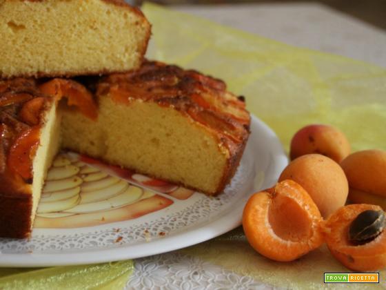 Torta ricotta e albicocche