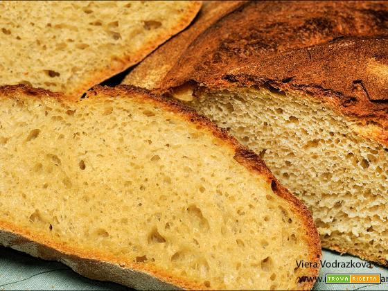 Pane quotidiano con la farina del Lupino