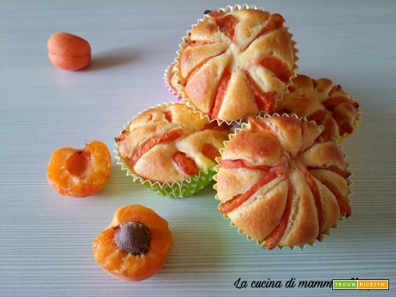 Muffin alle albicocche - Semplici e buonissimi