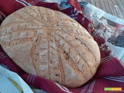 Pagnotta con farina integrale