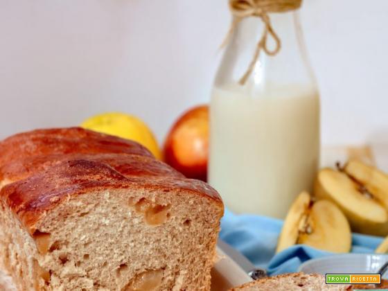 Brioche light all'acqua, olio di cocco, mele e cannella