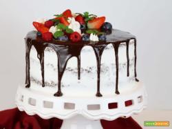 Drip Cake al cioccolato e frutti rossi