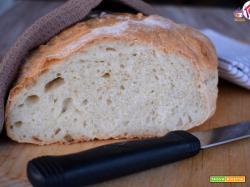 Pane sciapo o pane toscano