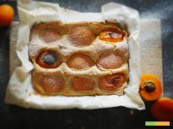 Torta rustica con farina di cocco e albicocche