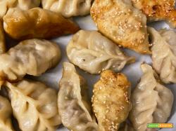 Dumpling – Ravioli Cinesi