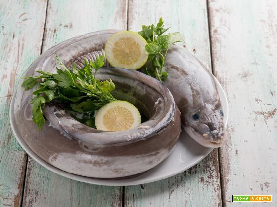 Grongo, un pesce dalle ottime proprietà nutrizionali