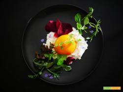 """""""Non Uovo"""": Pomodoro Tondo Arancione con Maionese di Anacardi"""