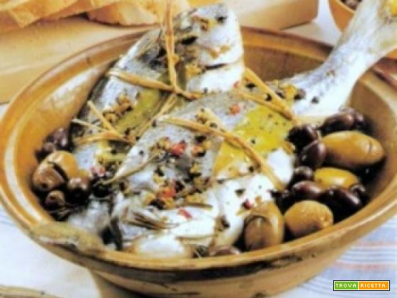 ORATE ALLE OLIVE