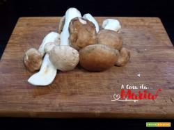 Frittura di funghi porcini