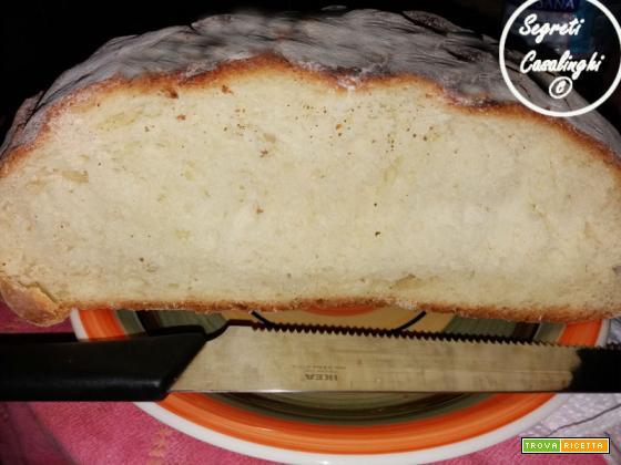 pane casalingo pasta madre