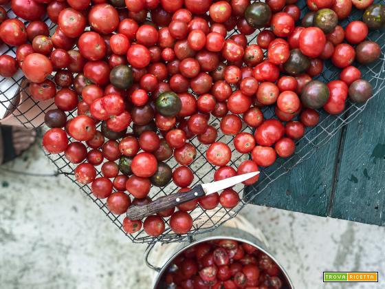 La ricetta e il metodo per fare la conserva di pomodoro in casa.